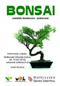 bonsai aktualnosci